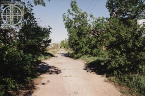 Old Higgins Road