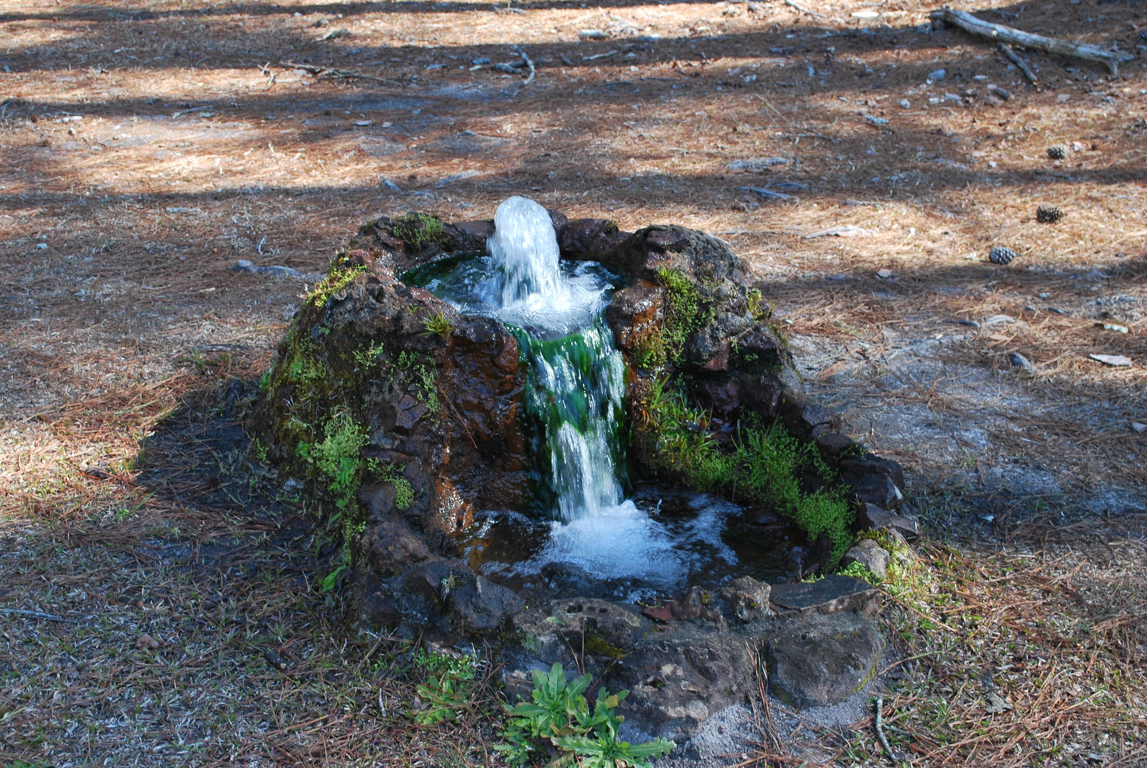 The Artesian Springs Of Schaumburg Township